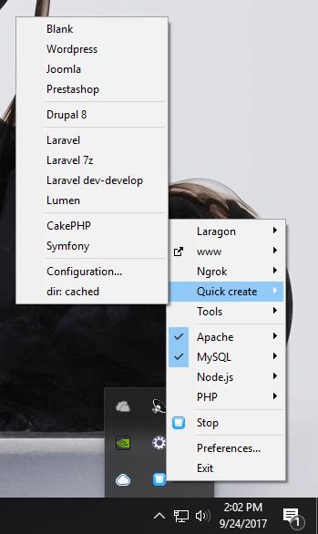 laragon quick create options