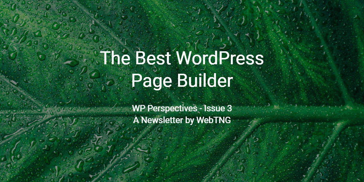 The Best WordPress Page Builder - WP Perspectives Issue 3