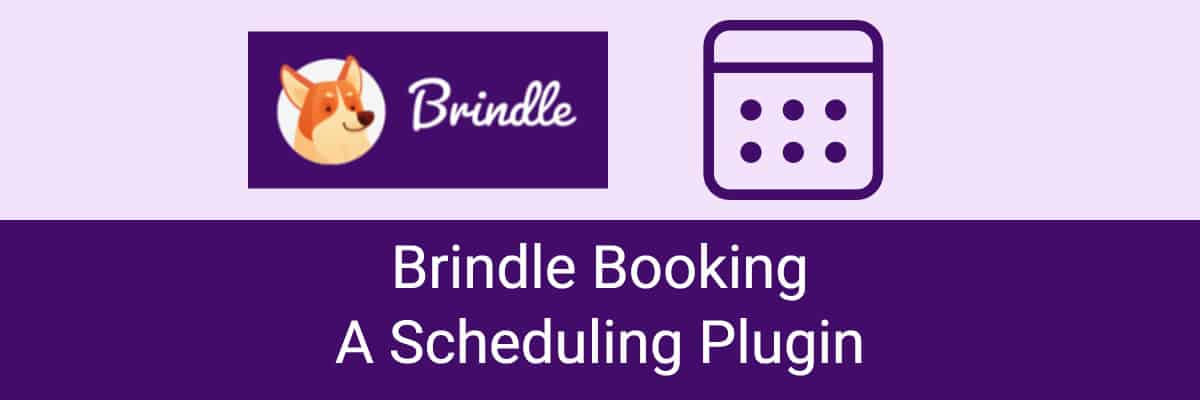 brindle booking review