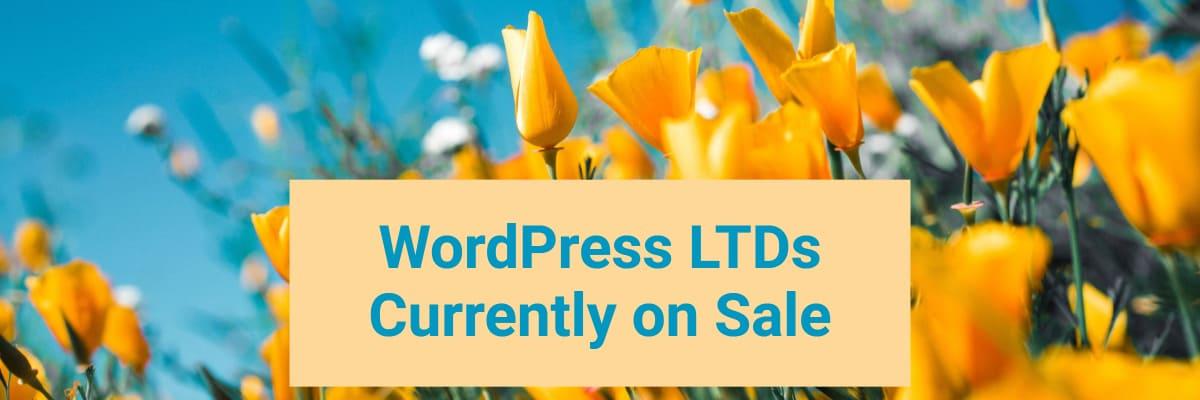 wordpress ltds currently on sale