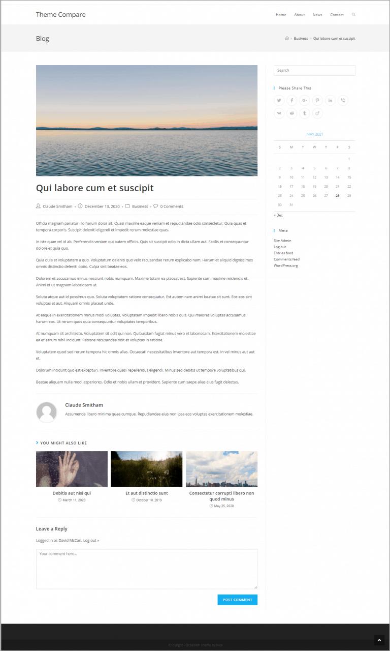 oceanwp post example